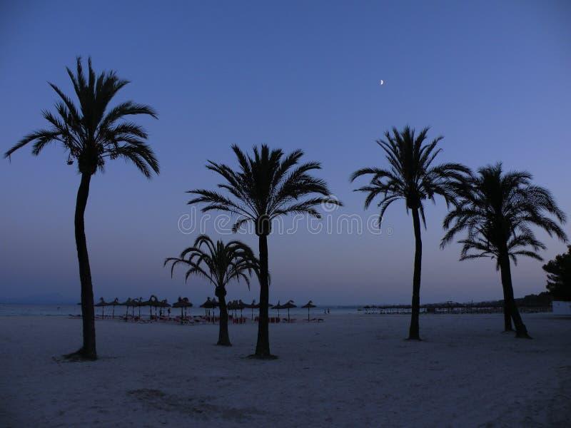 Noche en Mallorca fotos de archivo