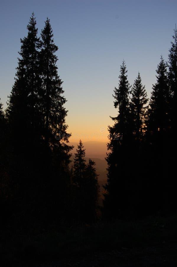 Noche en montaña cárpata imagen de archivo