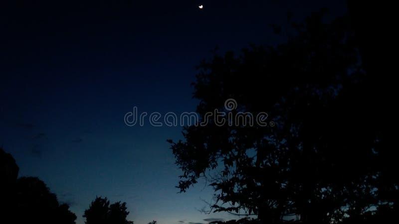 Noche stock photo