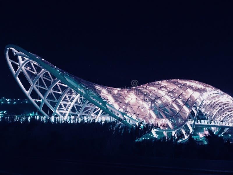 Noche Tbilisi Puente de la paz Palacio presidencial La capital de Georgia fotos de archivo