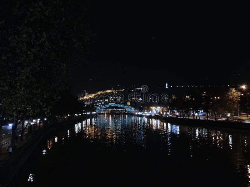 Noche Tbilisi Puente de la paz Palacio presidencial La capital de Georgia fotografía de archivo libre de regalías
