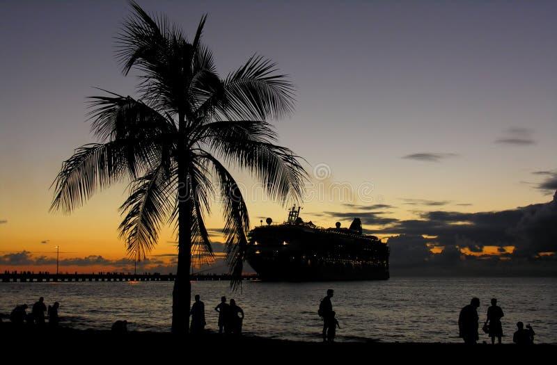 Noche tropical fotos de archivo