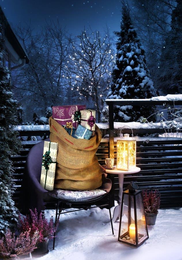 Nochebuena de invierno en el jardín imágenes de archivo libres de regalías