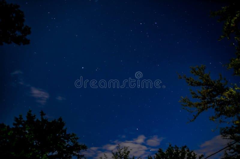 Noches estrelladas foto de archivo