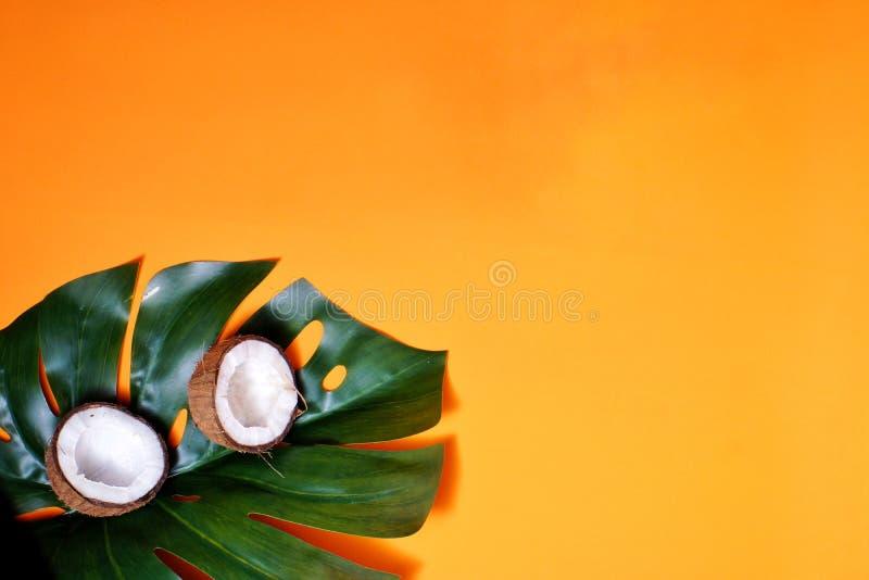 noci di cocco e foglia tropicale della pianta di monstera con su fondo arancio Strato piano, vista superiore, spazio della copia  fotografie stock libere da diritti