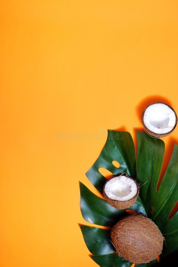 noci di cocco e foglia tropicale della pianta di monstera con su fondo arancio Strato piano, vista superiore, spazio della copia  fotografia stock