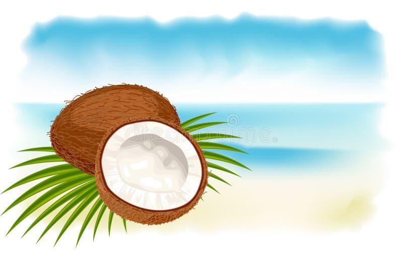 Noci di cocco, mare e spiaggia maturi. illustrazione di stock