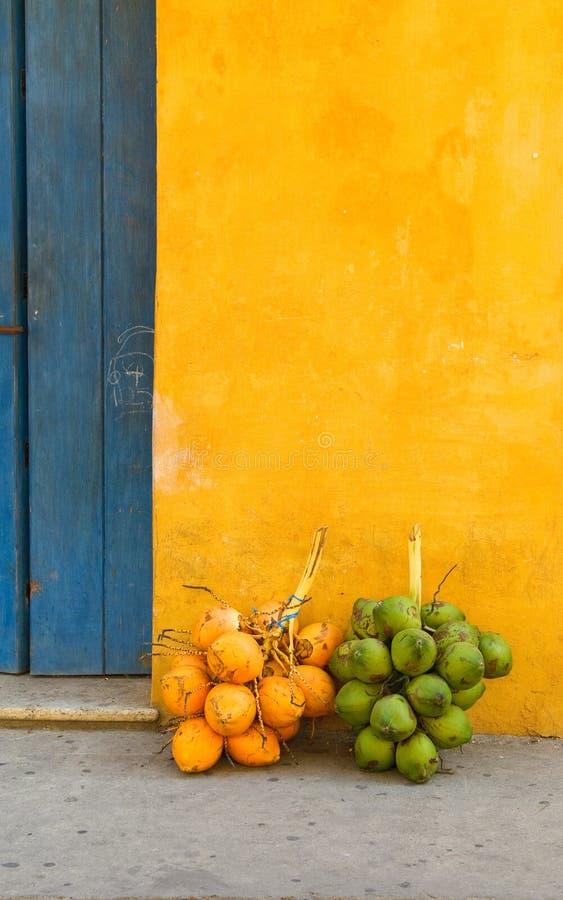 Noci di cocco nella via di Cartagine, Colombia fotografia stock