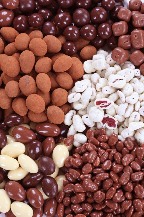 Noci e frutta coperte cioccolato immagini stock