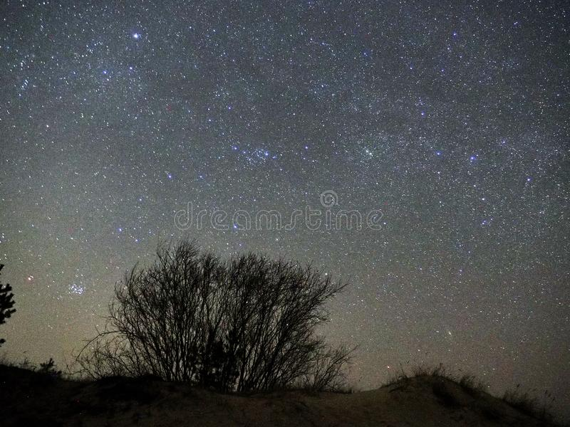 Nocne niebo gra g??wna rol?, Pleiades otwarty gwiazdowy grono M45 w Taurus gwiazdozbiorze obraz royalty free
