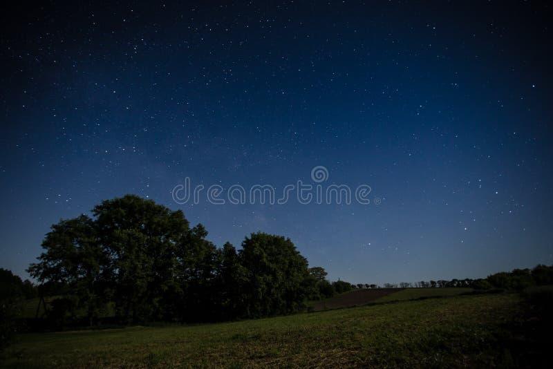 Nocne niebo nad polem zdjęcie royalty free