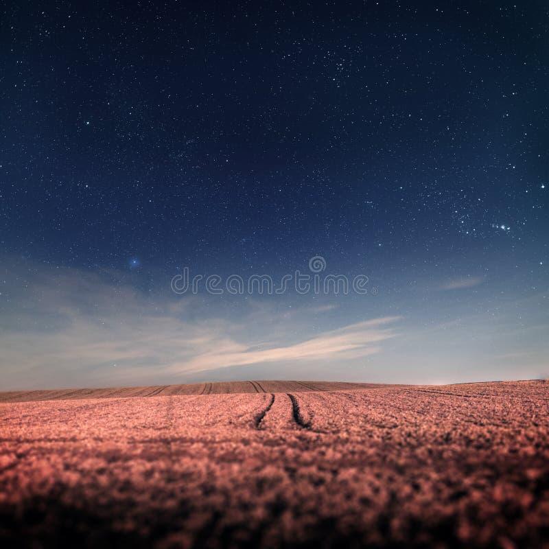 Nocne niebo z gwiazdami nad polem z śladami fotografia stock