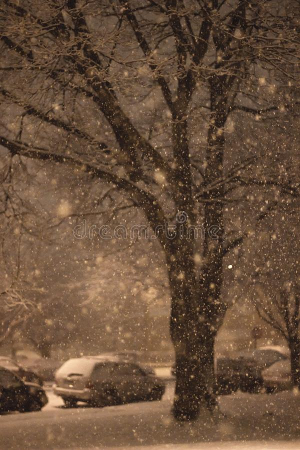 Nocny śnieg zdjęcia stock
