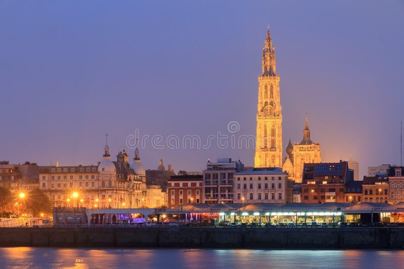 Nocy Antwerp pejzaż miejski zdjęcia stock