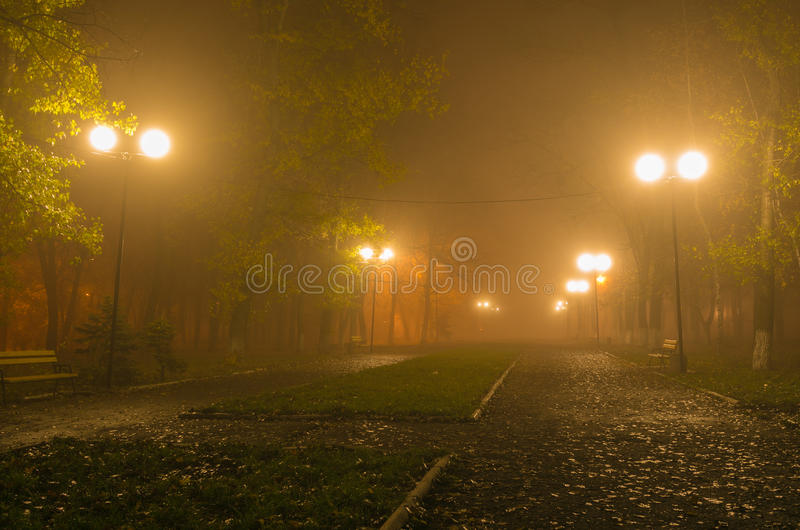 Nocy miasta aleja z lampionami w mgle po deszczu obraz royalty free