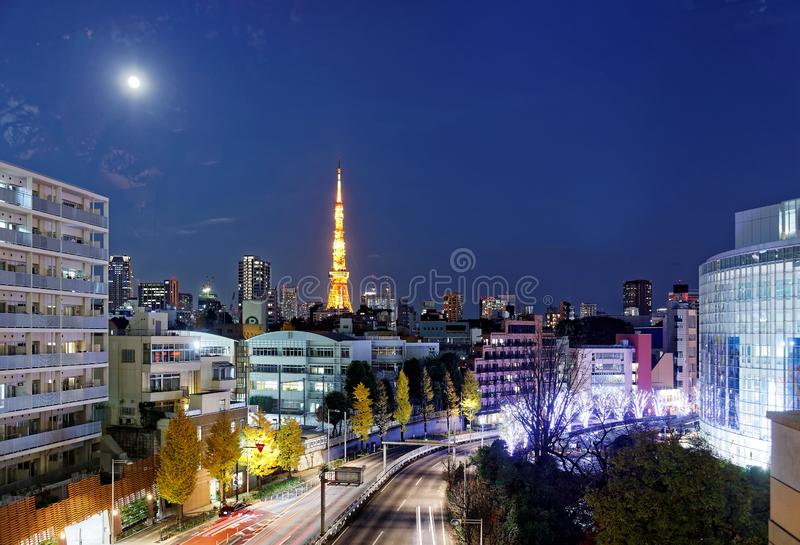 Nocy sceneria romantyczny zimy iluminacji pokaz przy bożymi narodzeniami, w Roppongi wzgórzach zdjęcia royalty free