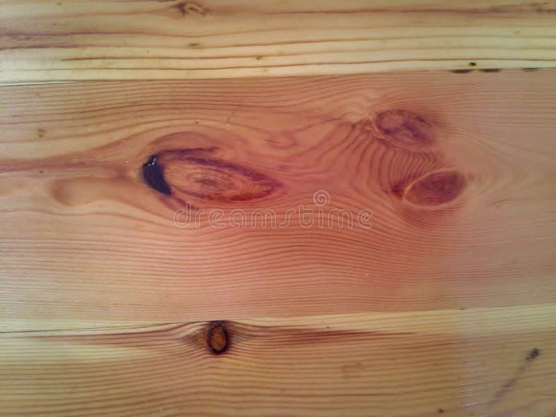 Nodi in legno immagine stock libera da diritti