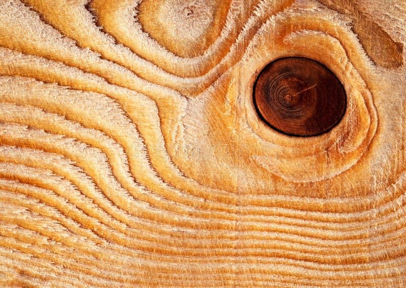 Nodo circolare su legno immagine stock libera da diritti