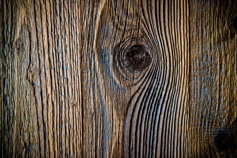 Nodo nel fondo di legno della parete fotografie stock libere da diritti