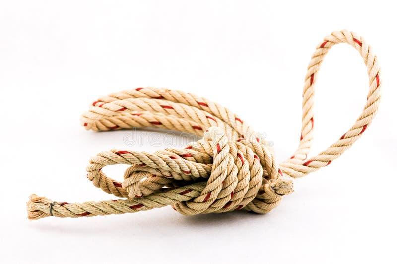 Noeud de corde à l'arrière-plan blanc photos libres de droits