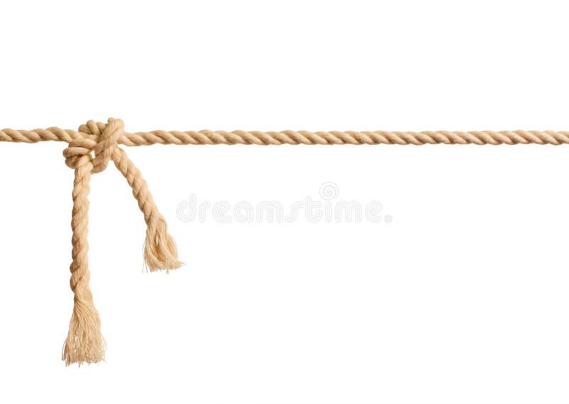 Noeud de corde sur le fond blanc d'isolement photos libres de droits