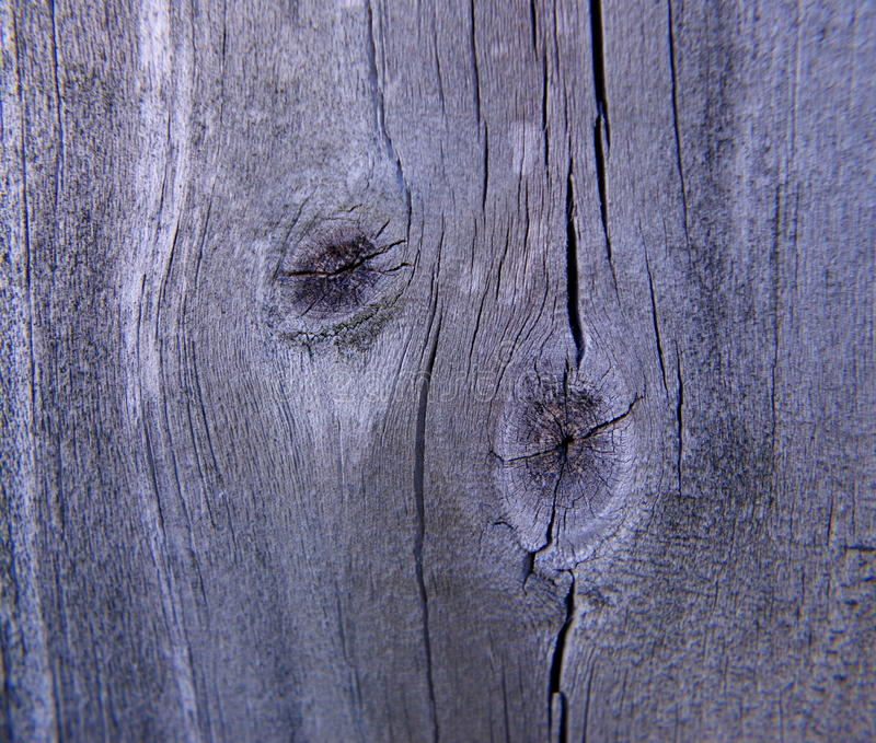 Noeud en bois de barrière images libres de droits