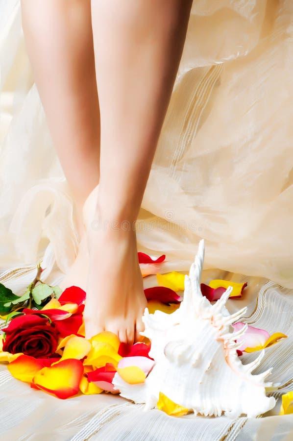 nogi dziewczyn. fotografia royalty free