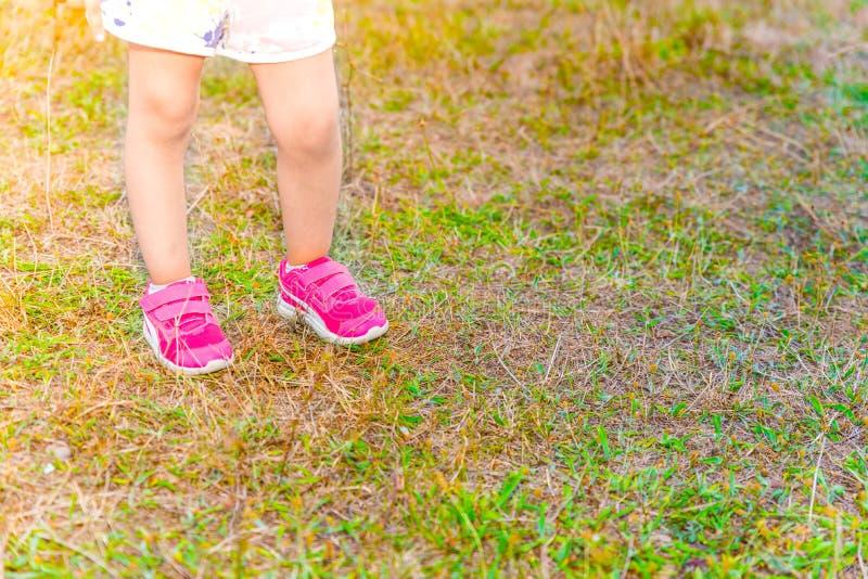 Nogi dziewczyna stojaki na zielonej trawie troszkę obraz stock