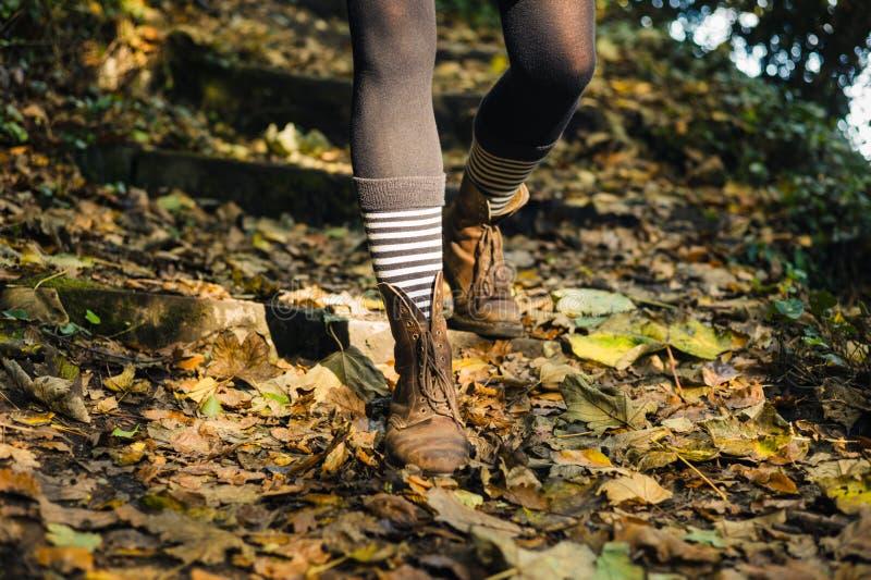 Nogi młodej kobiety odprowadzenia puszka lasu skłon zdjęcia royalty free