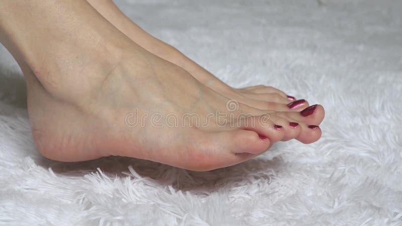 Nogi młodej kobiety zakończenie na białym tle Pojęcie piękno i zdrowie fotografia royalty free