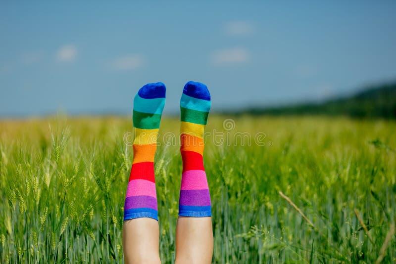 Nogi w LGBT skarpetach podnosili w górę pszenicznego pola dalej fotografia royalty free