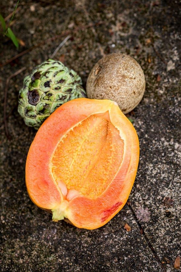 Noi-Na, Papaja en een houten appel royalty-vrije stock foto