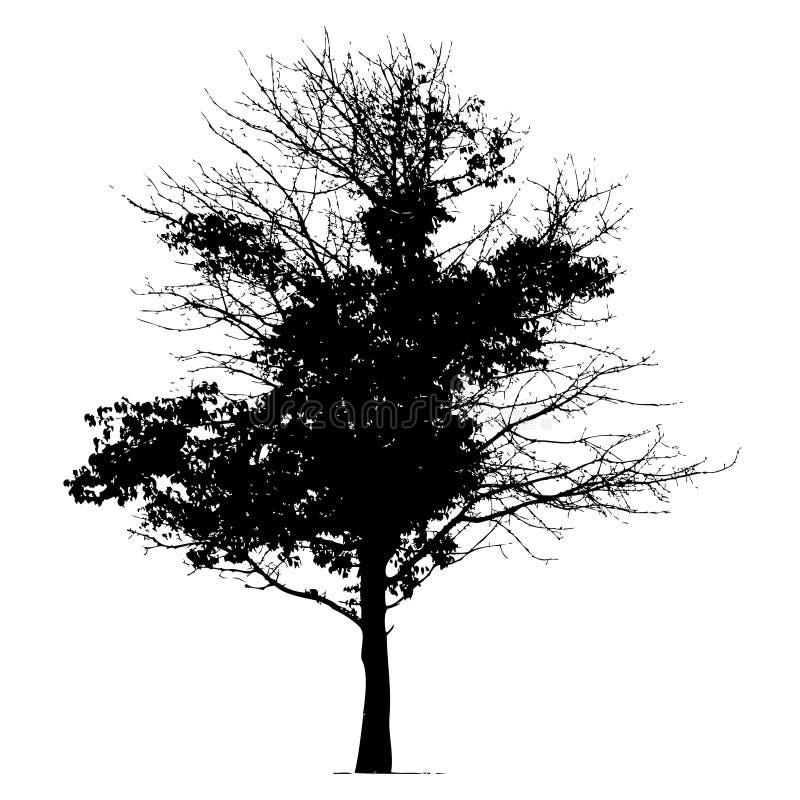 Noir de silhouette d'arbre illustration de vecteur