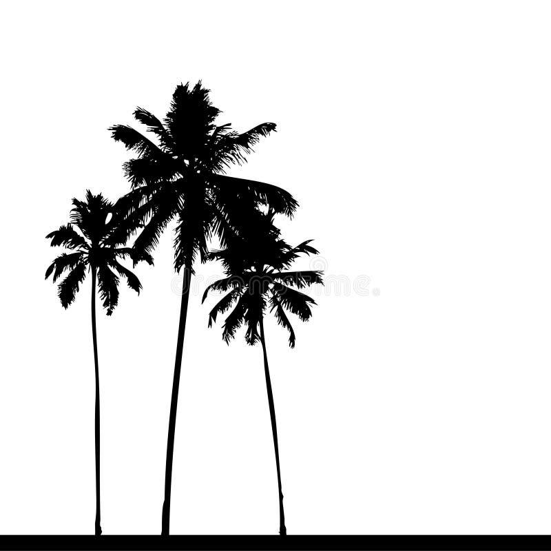 Noir de silhouette de palmier illustration stock