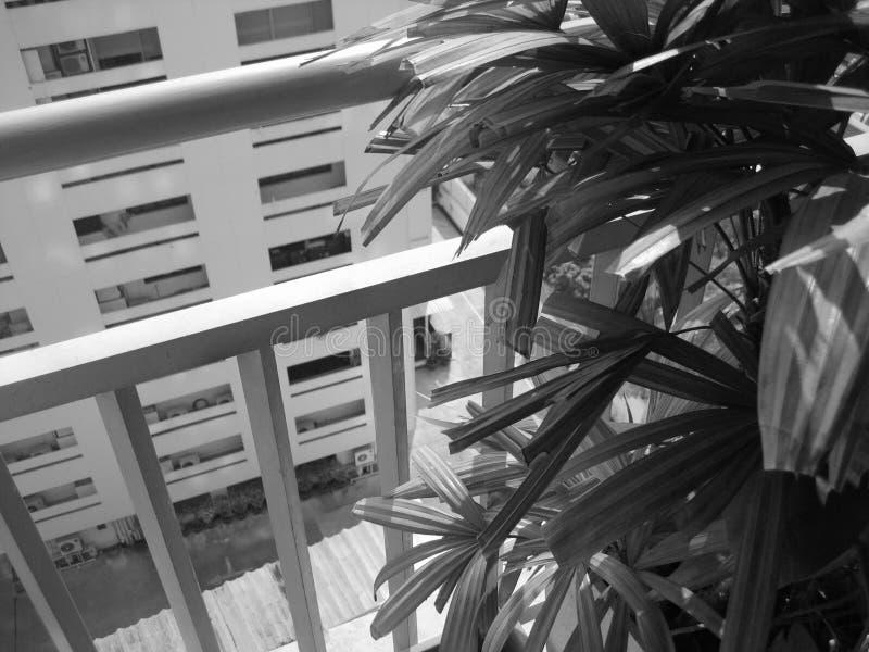 Noir et blanc du logement urbain photographie stock