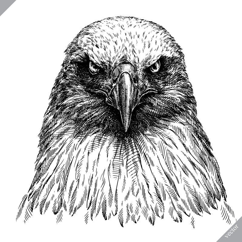 Noir et blanc gravez l'illustration d'isolement de vecteur d'aigle illustration stock