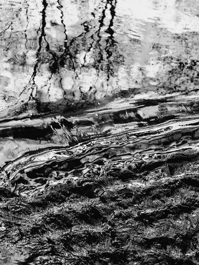 Noir et blanc - les ondulations de l'eau reflètent la beauté de la nature intacte photos libres de droits