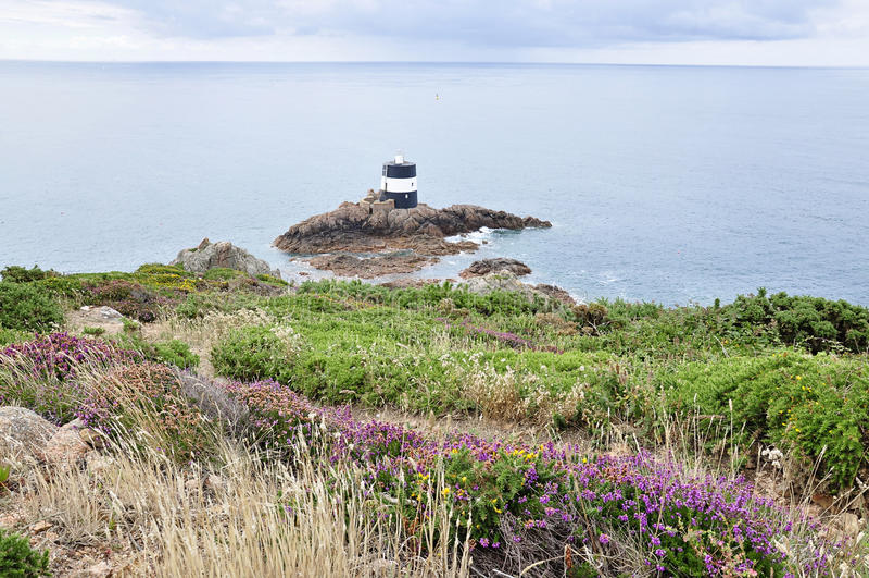 Noirmont点在泽西,海峡群岛 免版税库存照片