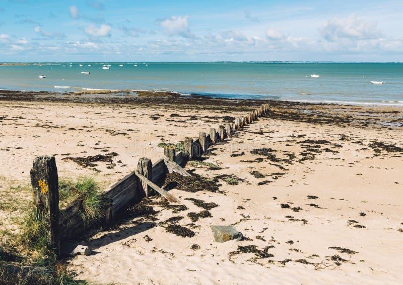 Noirmoutier island landscape, France. Noirmoutier island landscape in Vendée France royalty free stock photography
