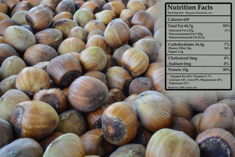 Noisette - nutrition photo libre de droits