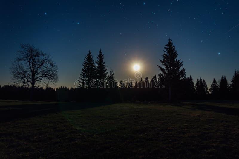 Noite agradável da estrela com árvores e lua em Novohradske hory, paisagem checa fotografia de stock