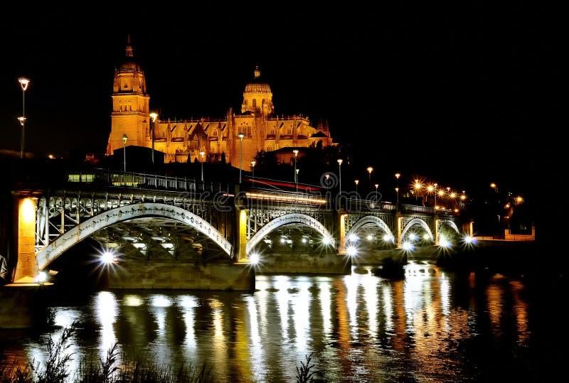 Noite da catedral de Salamanca. foto de stock royalty free