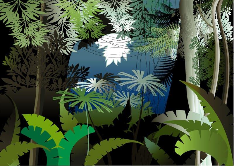 Noite da selva ilustração stock
