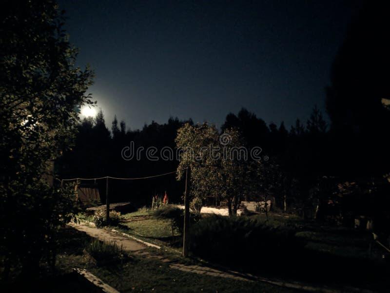 Noite de verão rural e a lua fotografia de stock
