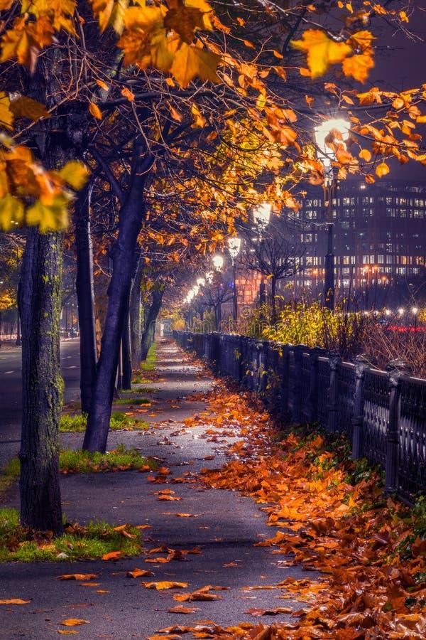 A noite disparou na arquitetura da cidade no outono com luzes artificiais com l imagem de stock
