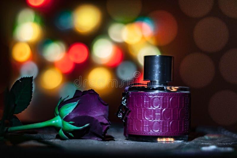 Noite do amor fotos de stock