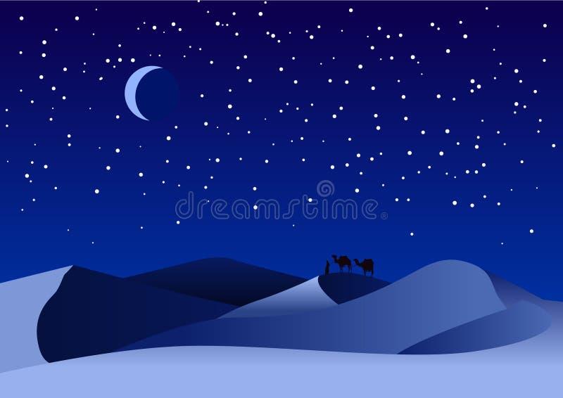 Noite do deserto ilustração do vetor