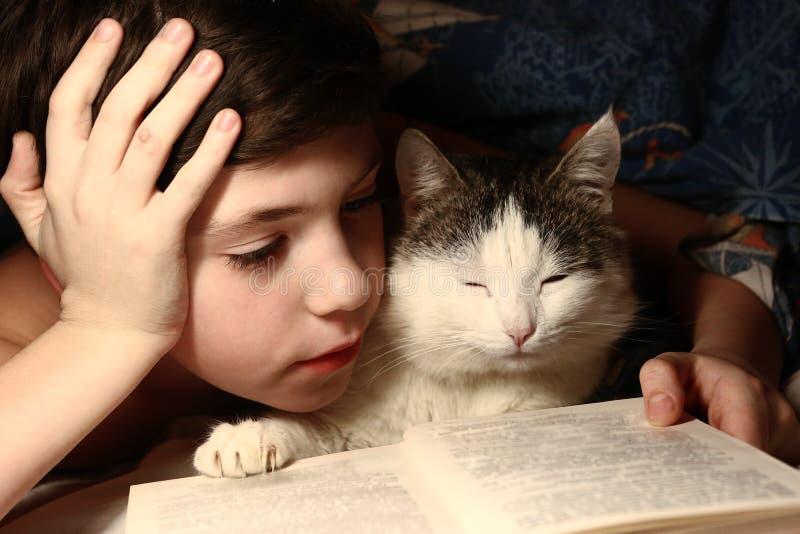 A noite do menino leu o livro com gato fotografia de stock royalty free