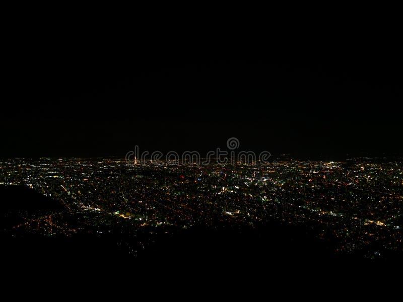 Noite do Tóquio que sightseeing fotografia de stock royalty free
