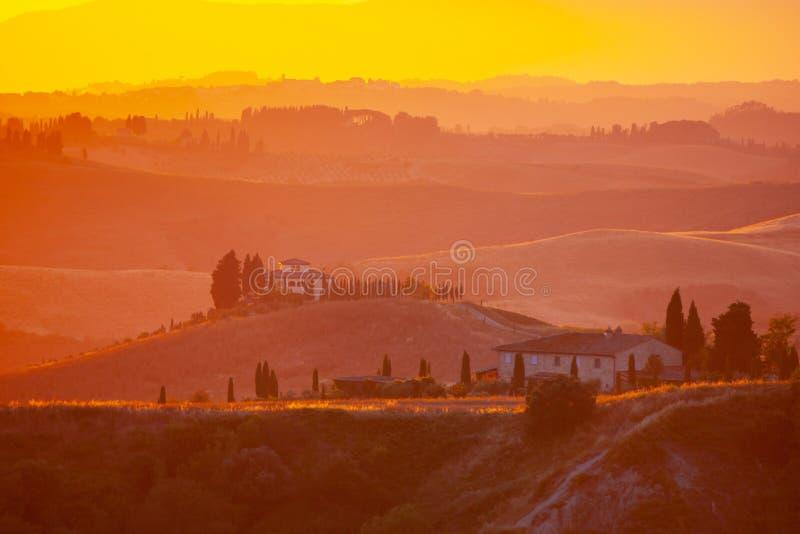 Noite em Toscânia Paisagem de Hilly Tuscan no humor dourado no tempo do por do sol com as silhuetas dos ciprestes e das casas da  fotografia de stock